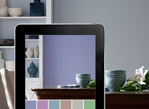 dulux using the colour wheel