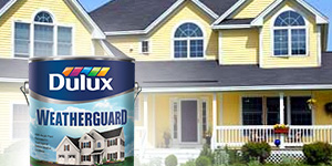 Dulux Products