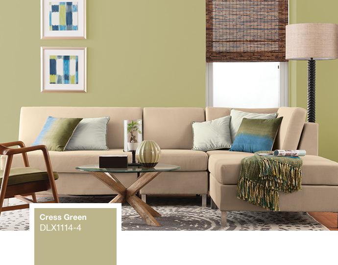 Dulux Living Room Paint Colours, Nice Living Room Paint Colors